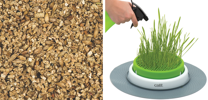 catit cat grass kit instructions