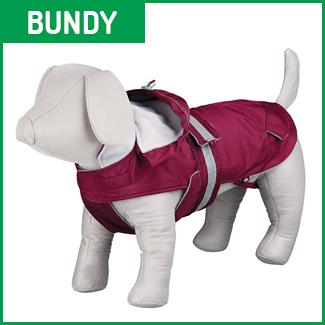 bundy pro psy