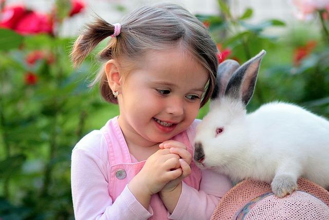 králík s holčičkou