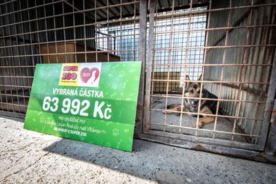 Útulek Lesan v Kralupech převzal výtěžek 63 992 Kč - Foto 6