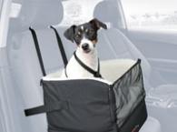 Cestování se psem výprodej