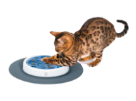 Hračky, tunely a prolézačky pro kočky výprodej