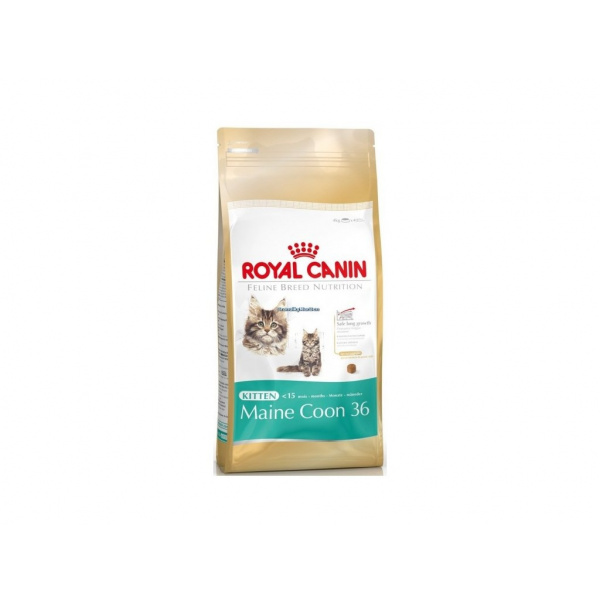 Royal canin kitten maine coon 400g