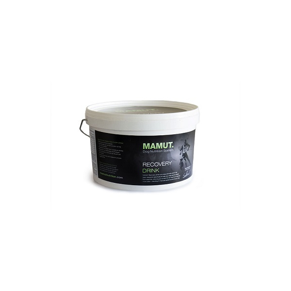 Mamut recovery drink 800g