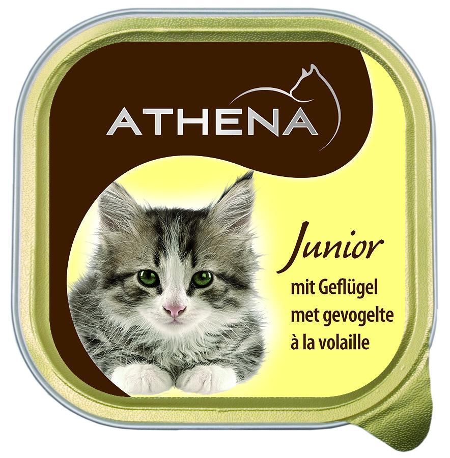 Paštika ATHENA junior drůbeží 100g