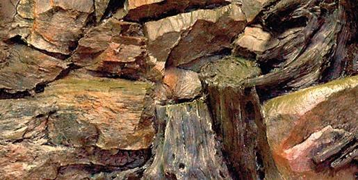 Pozadí AQUA EXCELLENT Root 60 x 30 cm