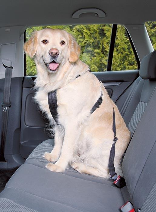 Postroj bezpečnostní pro psy do auta Trixie L 70-90cm černá