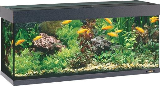 Akvárium set JUWEL Rio 240 černé 240l