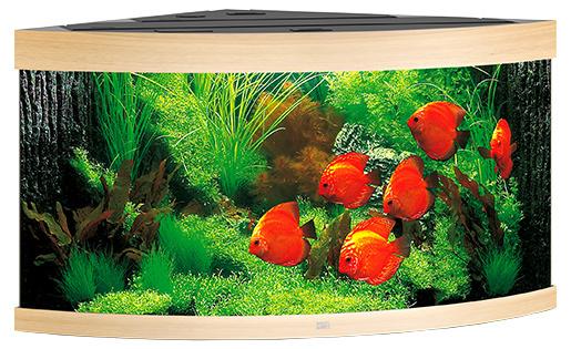 Akvárium set Trigon LED 350 123x87x65cm sv. hnědé 350l