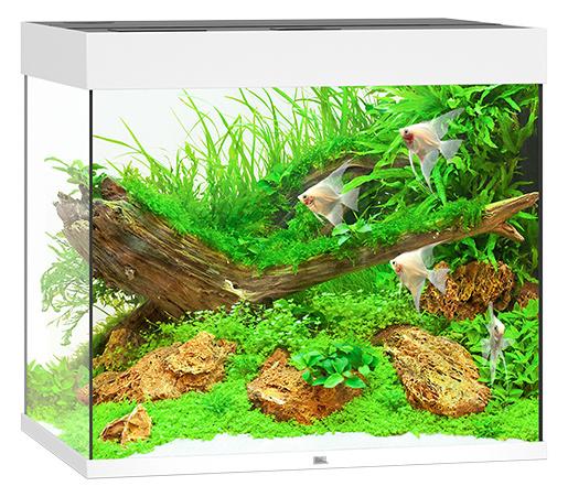 Akvárium set Lido LED 200 bílá 70x51x65cm 200l