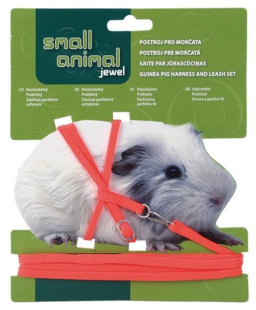 Small Animal Postroj pro morčata červený