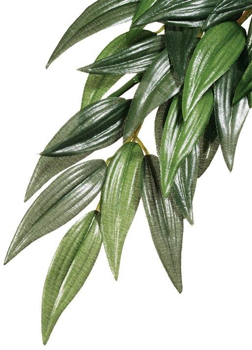 Rostlina EXO TERRA Rucus malá 36 cm