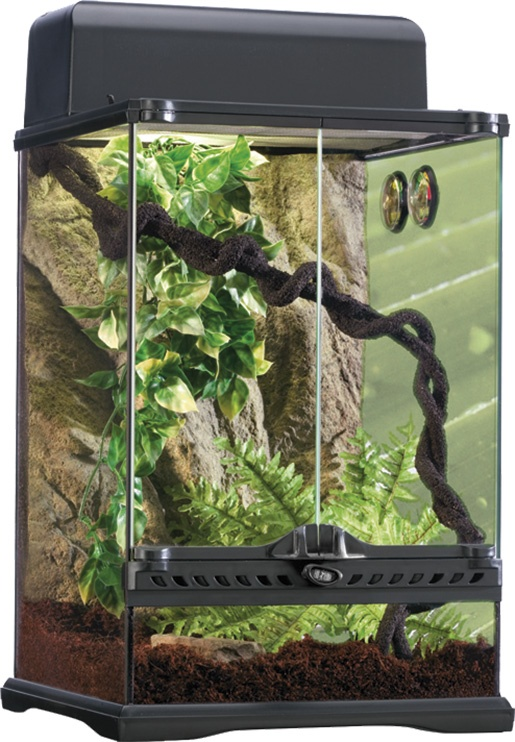 Terárium set EXO TERRA Rainforest Habitat S
