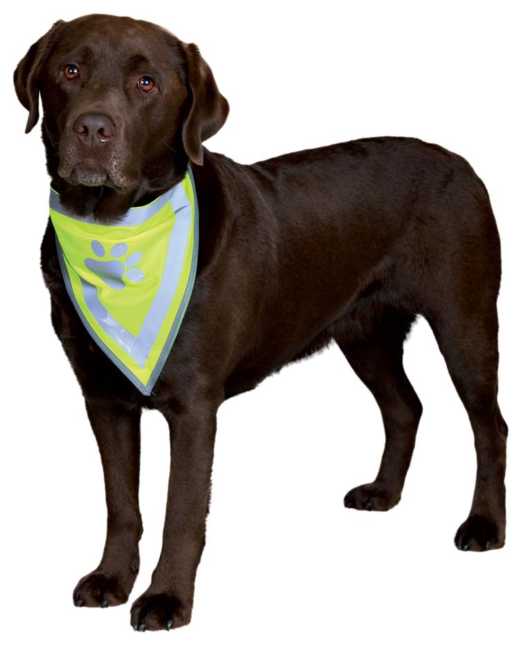 Šátek pro psy reflexní Trixie L-XL 43-60cm
