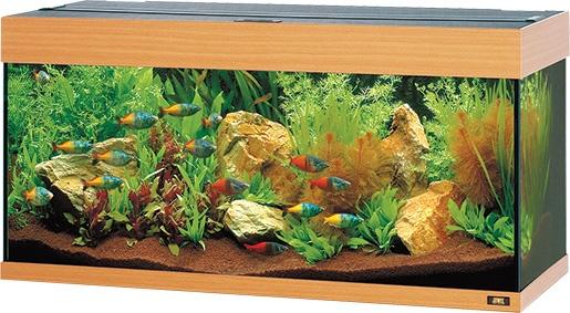 Akvárium set JUWEL Rio 180 buk 180l