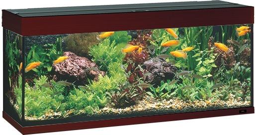 Akvárium set JUWEL Rio 240 tmavě hnědé 240l
