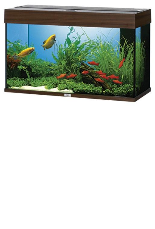 Akvárium set JUWEL Rio 125 tmavě hnědé 125l