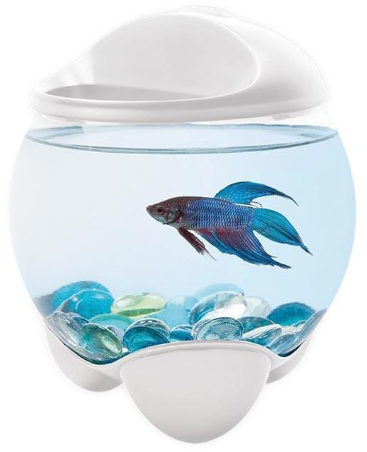 Akvárium TETRA Betta Bubble bílé 1,8l