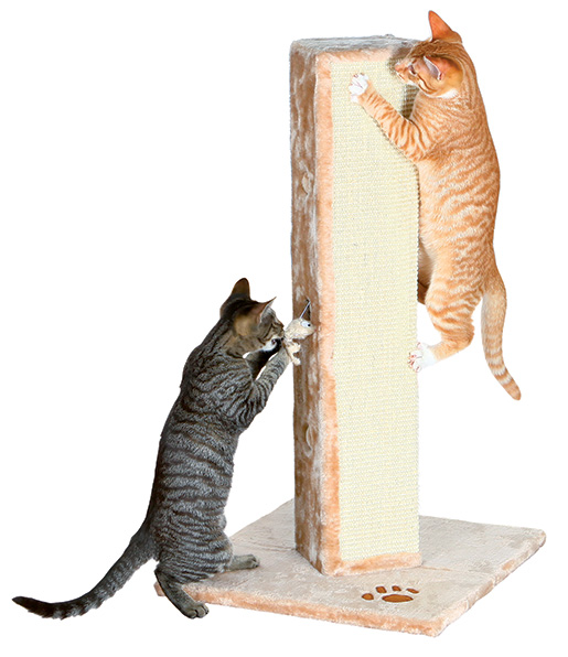 Škrabadlo pro kočky Trixie Soria 80cm béžová
