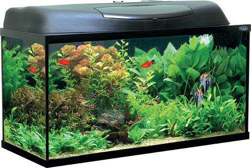 Akvárium set AQUAEL Pearl 80 černé 112l