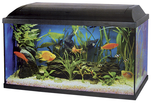 Akvarium set CAT-GATO 100 x 40 x 40 cm 160l