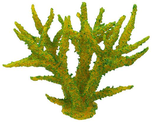 Aqua Excellent Dekorace akv. Mořský Korál měkký zelený 16x12,5x13,5cm