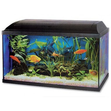 Akvarium set CAT-GATO 80 x 30 x 40 cm 96l