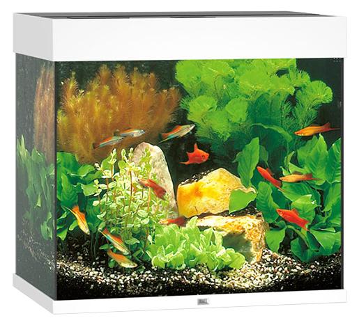 Akvárium set JUWEL Lido LED 120 bílá