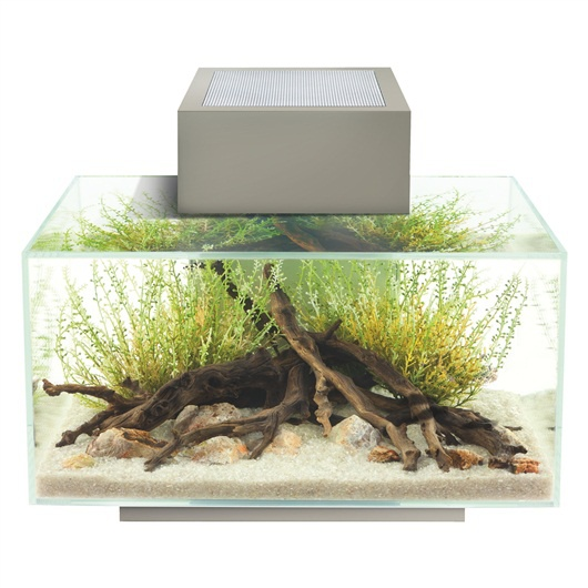 Akvárium set Fluval Edge LED Pewter 23l