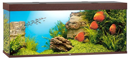 Juwel Akvárium set Rio LED 450 151x51x66cm tm.hnědé 450l