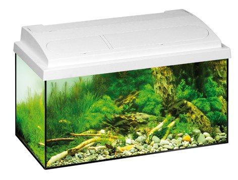 Akvárium set EHEIM Aquastar T8 bílý 54l, 60*30*30