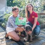 Mezinárodní den zvířat bez domova 2018 jsme věnovali Agátce z Handipet Rescue