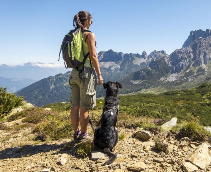 Cestování se psem a kočkou do zahraničí