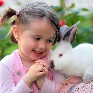 5 tipů na první zvířátko pro dítě